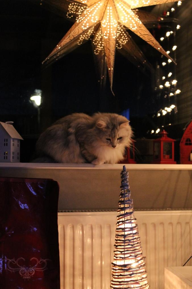 Bella kikar på julsakerna